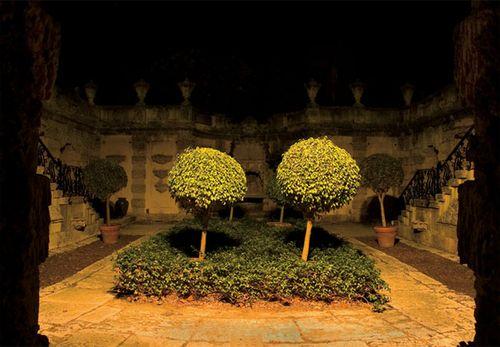 Gardenatnight