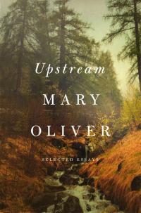 Upstream2